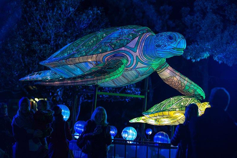 Taronga Zoo, Sydney 2017
